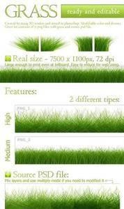 CreativeMarket - Seamless Grass Texture