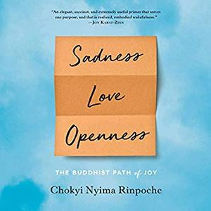 Sadness, Love, Openness: The Buddhist Path of Joy [Audiobook]