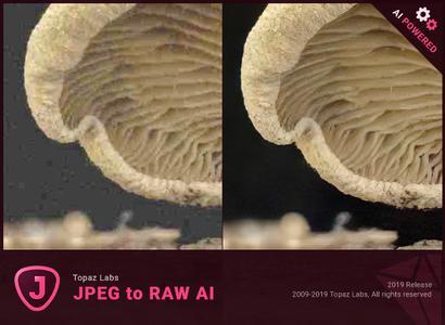 Topaz JPEG to RAW AI 2.2.0 + Portable