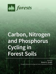 Carbon, Nitrogen and Phosphorus Cycling in Forest Soils