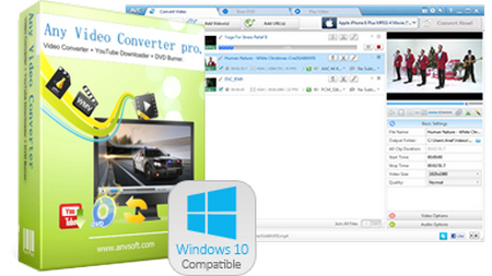 Any Video Converter Professional 6.3.5 Multilingual + Portable