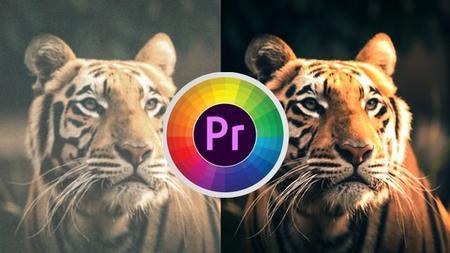 Premiere Pro: Color grading from zero to hero