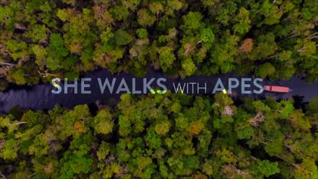 CBC - The Nature of Things: She Walks with Apes (2019)
