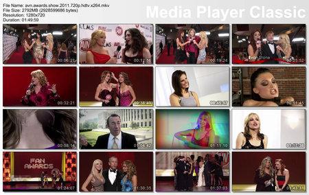 The 2011 AVN Awards Show