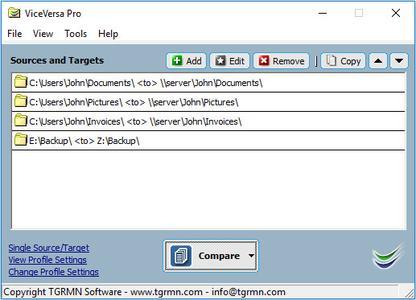 ViceVersa Pro 3.0 Build 3002