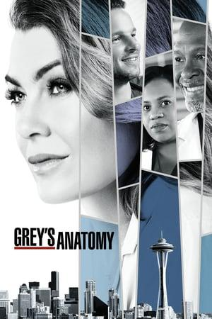 Grey's Anatomy S15E25