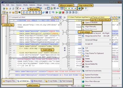 IDM UltraCompare Professional v8.10.0.1015 German