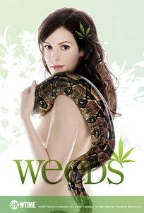 Weeds - S06E10: Dearborn-Again