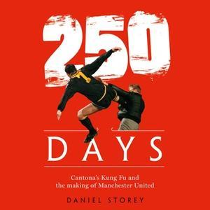 «250 Days» by Daniel Storey