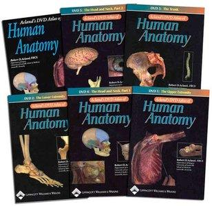 Acland's DVD Atlas of Human Anatomy [repost]