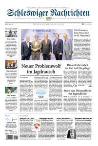Schleswiger Nachrichten - 29. November 2019