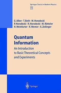 Quantum Information: An Introduction to Basic Theoretical Concepts and Experiments