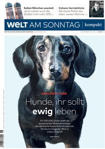 Welt am Sonntag Kompakt - 17 November 2019