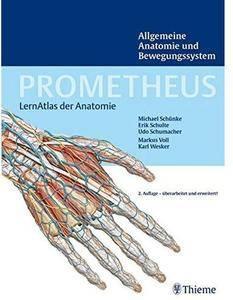 Prometheus LernAtlas der Anatomie: Allgemeine Anatomie und Bewegungssystem (Auflage: 2) [Repost]