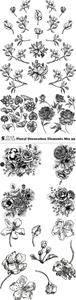 Vectors - Floral Decoration Elements Mix 39