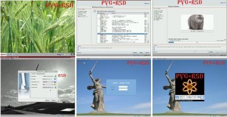BSD 8.0.0 (ENG/RUS)