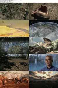 Animal Armageddon S01E05 The Great Dying (2009)