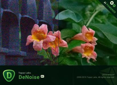 Topaz DeNoise AI 1.2.0 + Portable