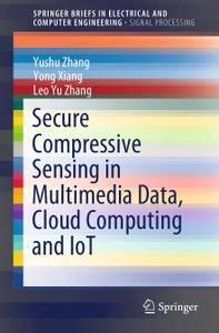 Secure Compressive Sensing in Multimedia Data, Cloud Computing and IoT