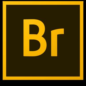 Adobe Bridge 2020 v10.0.0.124