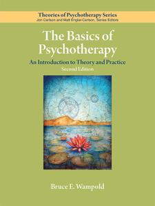 The Basics of Psychotherapy: An Introduction to Theory and Practice, Second Edition