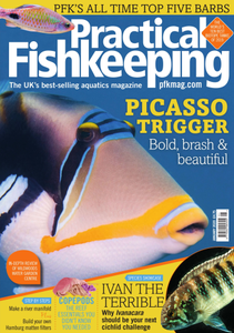 Practical Fishkeeping - January 2020