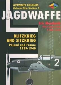 Jagdwaffe Volume One, Section 3: Blitzkrieg and Sitzkrieg: Poland and France 1939-1940 (Luftwaffe Colours) (Repost)