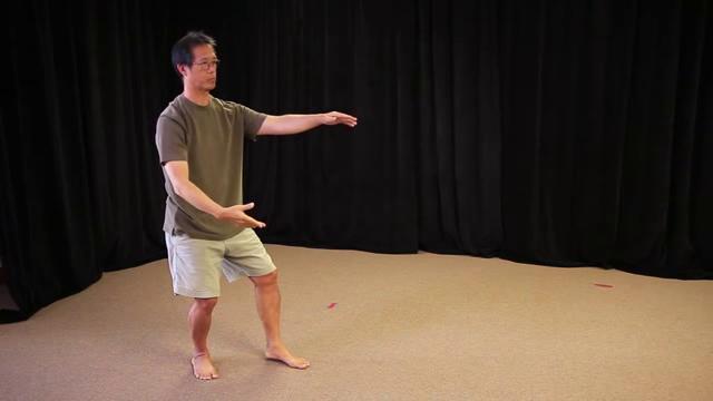 Bruce Frantzis - Old Yang Style Tai Chi  (Month 6-10)
