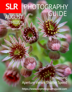 SLR Photography Guide - August 2019