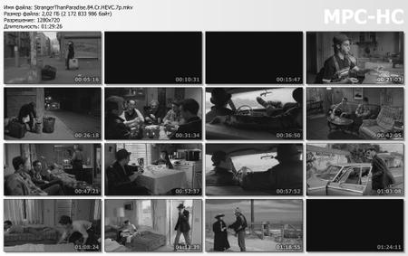 Stranger Than Paradise (1984) [Criterion Collection]