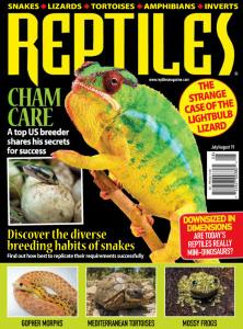 Reptiles - July-August 2019