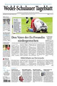 Wedel-Schulauer Tageblatt - 29. Juni 2020