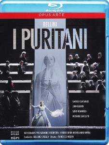 Giuliano Carella, Netherlands Philharmonic Orchestra - Bellini: I Puritani (2012) [Blu-Ray]
