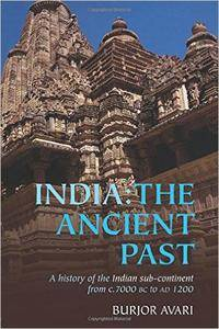 India: The Ancient Past: A History of the Indian Sub-Continent from c. 7000 BC to AD 1200