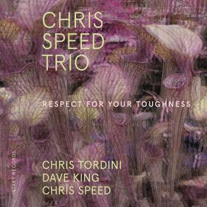 Chris Speed Trio - Respect for Your Toughness (feat. Chris Tordini & Dave King) (2019) [Official Digital Download 24/48]