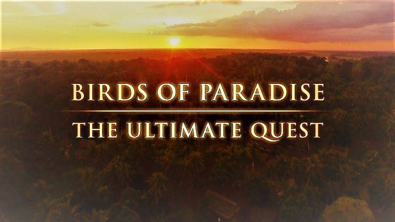 BBC - Birds of Paradise: The Ultimate Quest (2017)