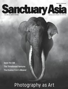 Sanctuary Asia - February 2019