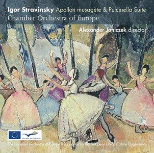 Chamber Orchestra of Europe - Stravinsky Apollon musagète & Pulcinella Suite Studio Master