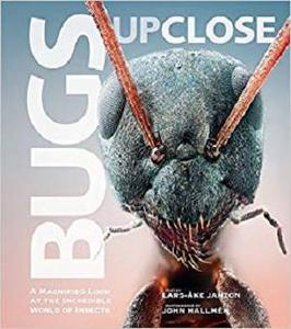 Bugs Up Close: A Magnified Look at the Incredible World of Insects