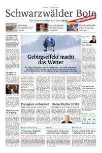 Schwarzwälder Bote Oberndorf - 11. Januar 2019