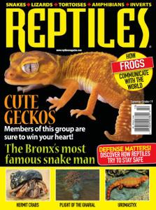 Reptiles - September-October 2019