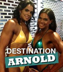 Destination Arnold (2016)