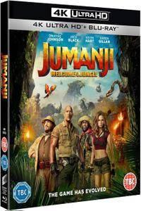 Jumanji: Welcome to the Jungle 4K (2017)