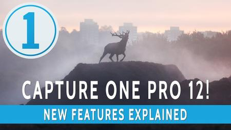 Capture One Pro 12.1.0.106 (x64) Multilingual