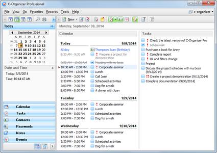 C-Organizer Professional 6.2 Multilingual Portable PROPER