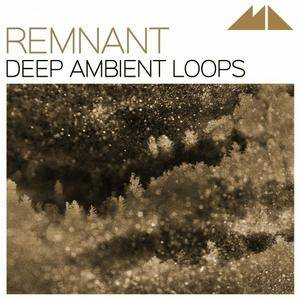 ModeAudio Remnant Deep Ambient Loops WAV MiDi