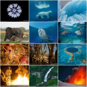 National Geographic - Wallpaper 2007