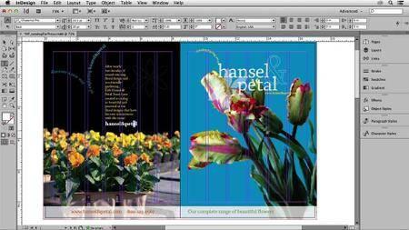Print Production: Prepress and Press Checks