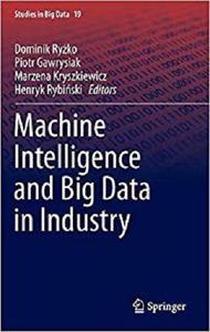 Machine Intelligence and Big Data in Industry (Studies in Big Data) [Repost]