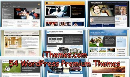 iThemes.com 54 WordPress Premium Themes